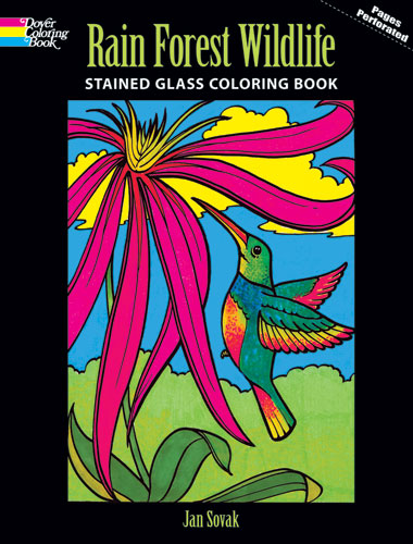 Rain Forest Wildlife Stained Glass Coloring Book 699 Dover Publications