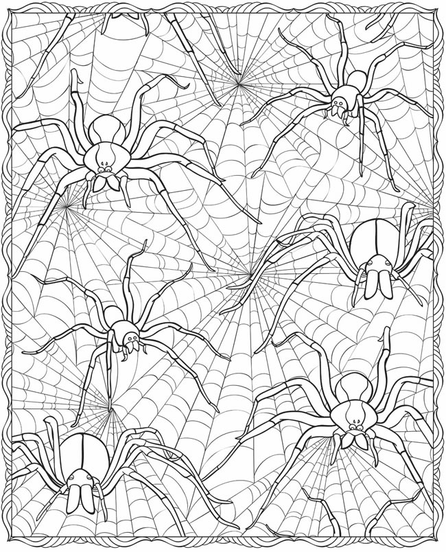 halloween spider web coloring pages - photo#24