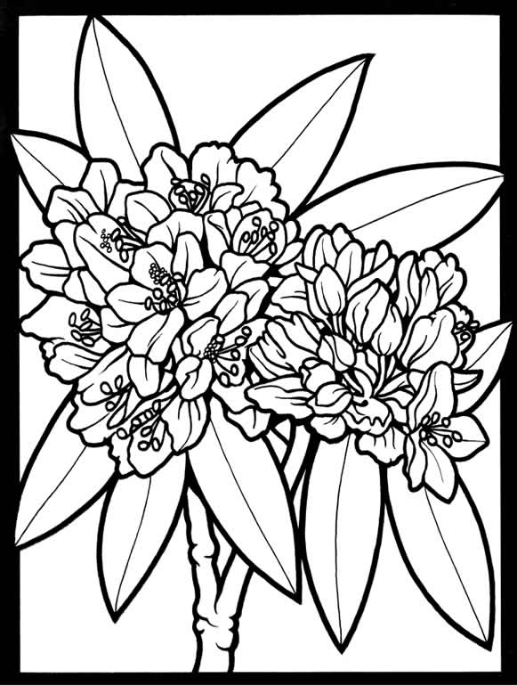okeefe coloring pages - photo #47