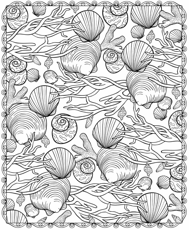 Free Coloring Pages Of Sea Shells Of
