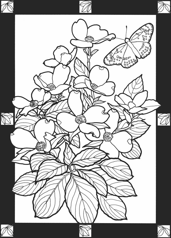 This is a picture of Persnickety Dover Publications Coloring Books