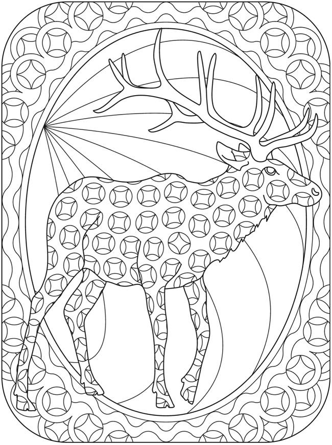 Baby Deer Coloring Page additionally Bambi Coloring Pages To Print moreover 90537 additionally Ncb01a as well 7b194a0b5c7eed80. on deer coloring pages for adults