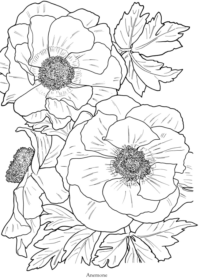 dover publications free coloring pages - photo#26