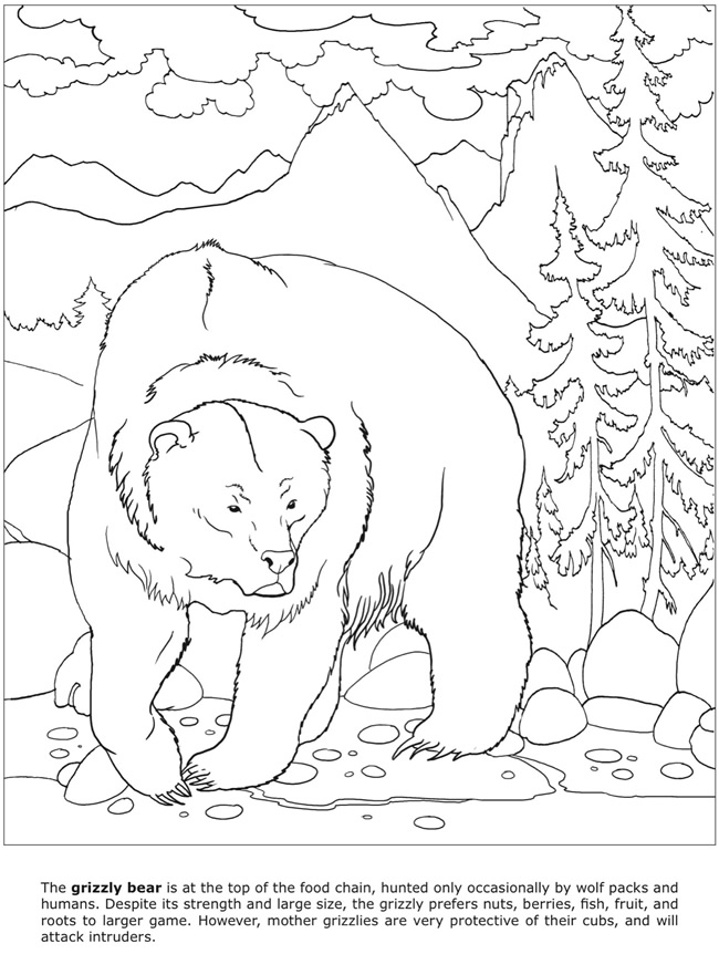 Coloring Pages Of Dangerous Animals : How to draw dangerous animals