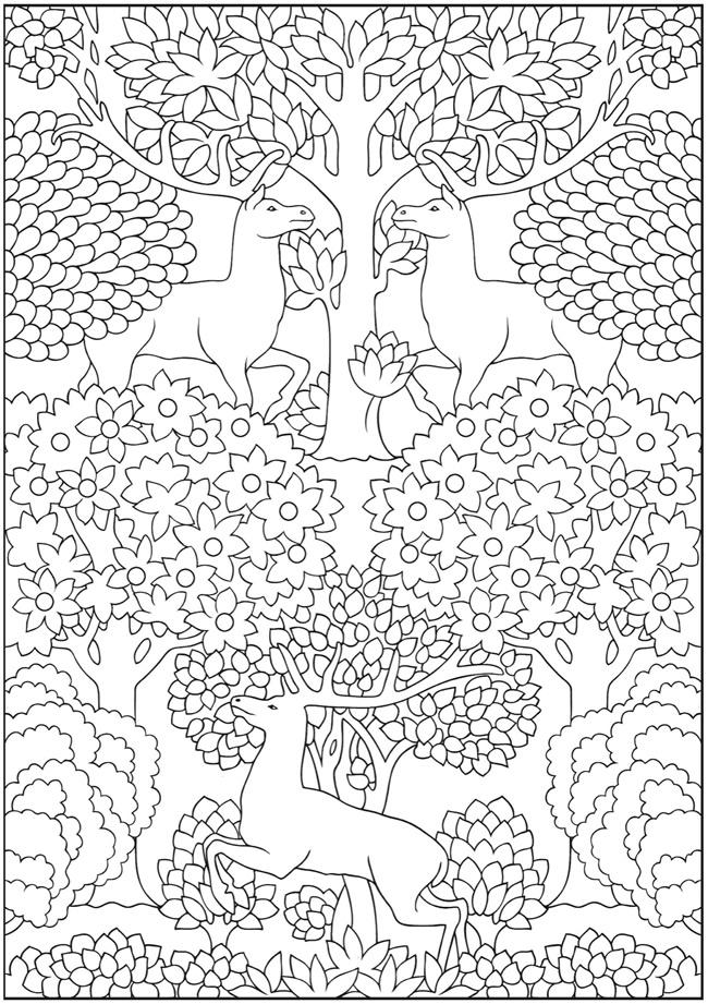 鹿と花 【動物アニマル】の大人の塗り絵(ぬりえ) テンプレート画像集 Naver まとめ
