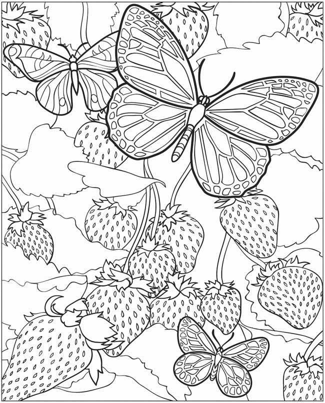 dover publications free coloring pages - photo#13