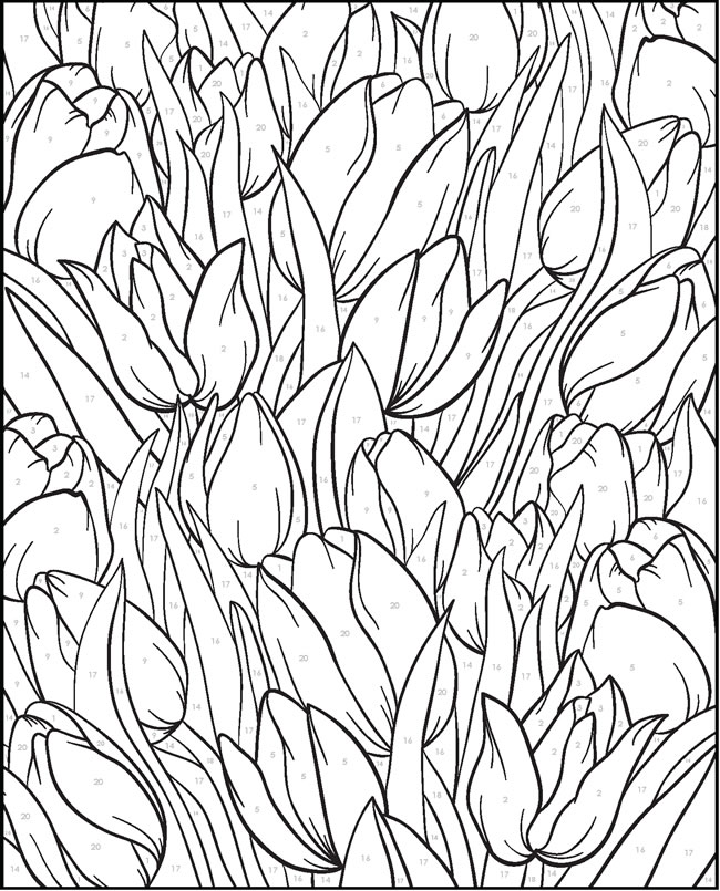 Paint Samples Colouring Pages