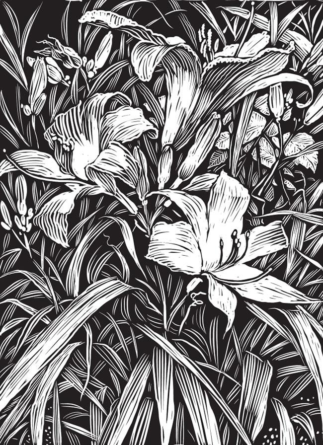 Mehndi Mehndi Designs And Dover Publications On Pinterest