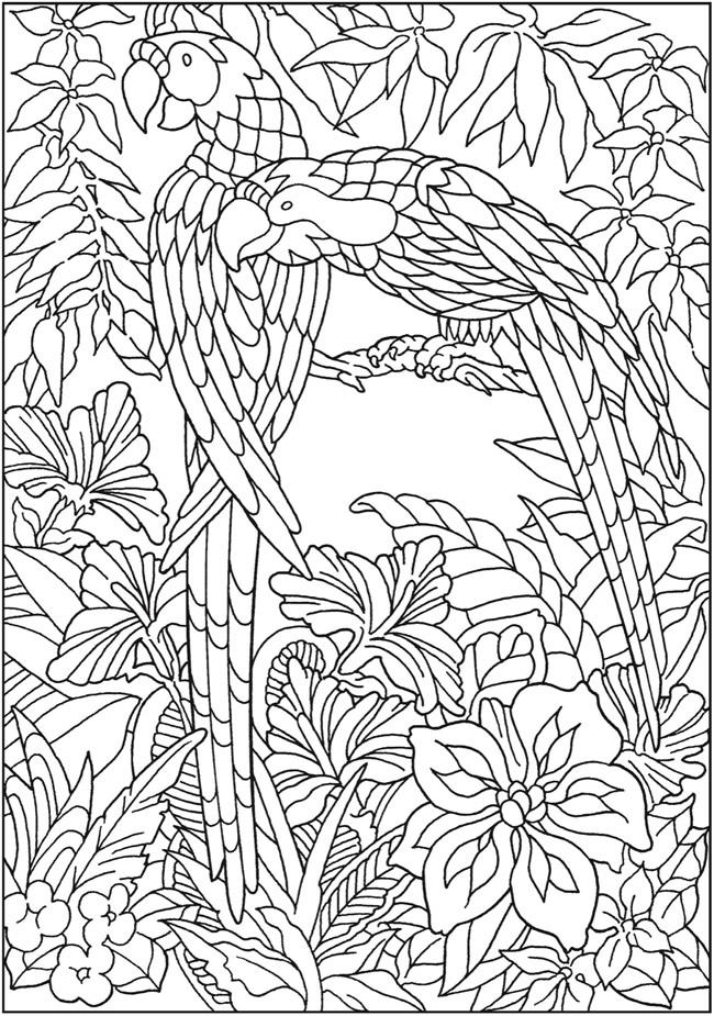 Dover Publications Books 8243662